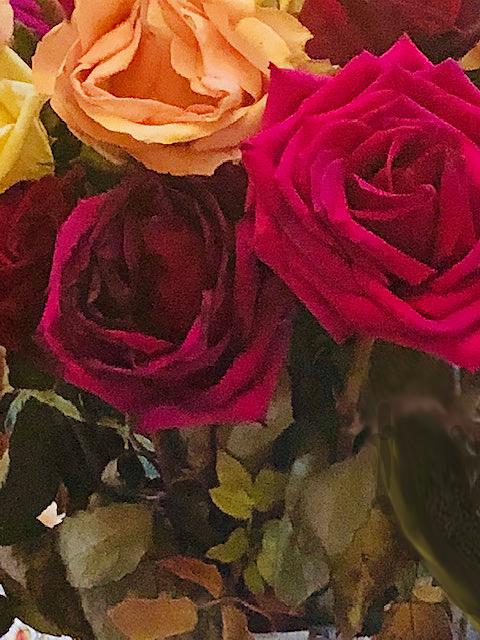 Roses.1